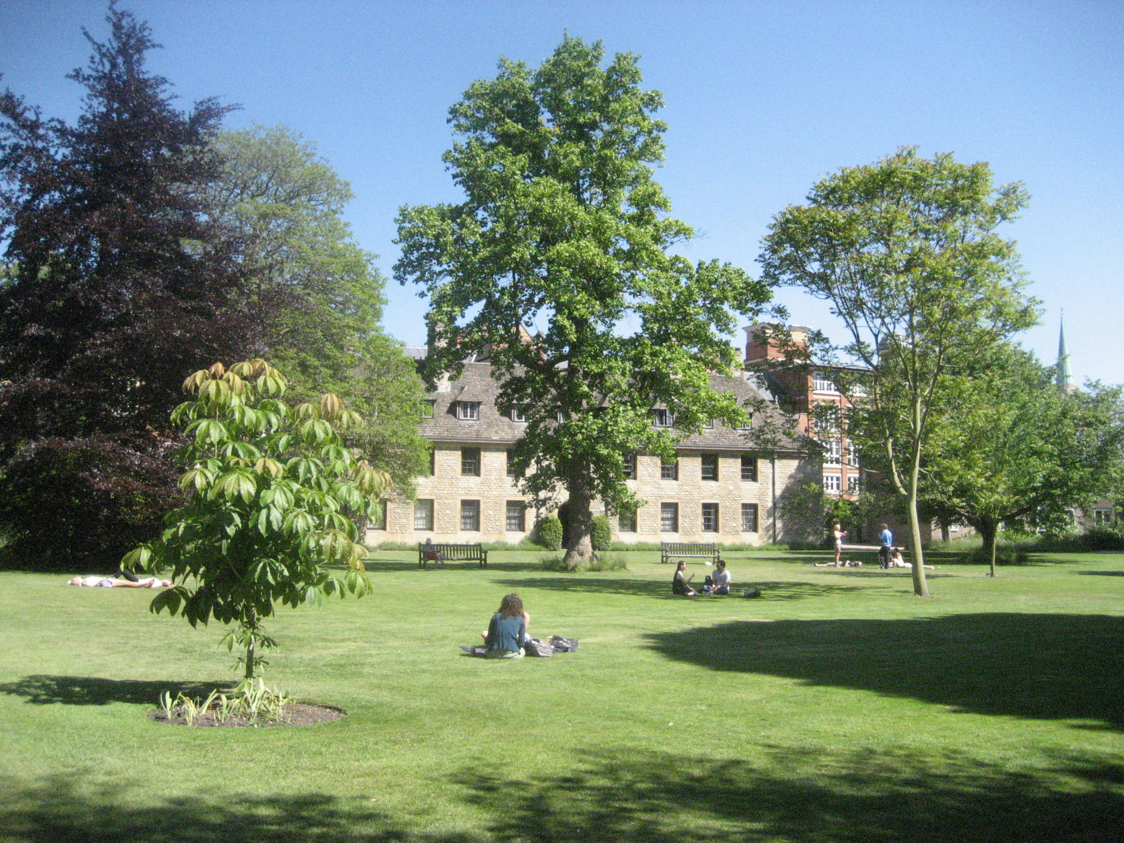 Worcester's Nuffield Lawn in fine weather.